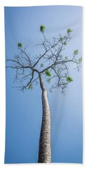 Beach Towel featuring the photograph Hope by Lana Enderle