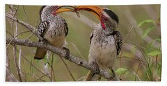 Hornbill Love Beach Sheet by Bruce J Robinson