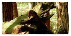 Horned Tree Beach Sheet