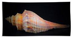 Horse Conch Beach Towel by Ray Shrewsberry
