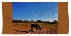 Horse Farm In The Fall Beach Sheet by Ed Sweeney