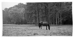 Horse In Pasture Beach Towel