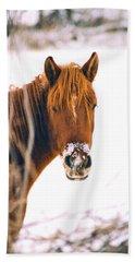 Horse In Winter Beach Towel by Steve Karol