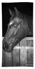 Horse Portrait Beach Sheet by Delphimages Photo Creations