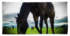 Horse Time Beach Towel