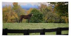 Horse With A View Beach Towel by Gary Hall