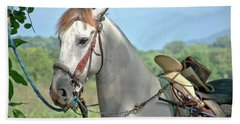 Horse With No Name Beach Sheet by Jim Walls PhotoArtist