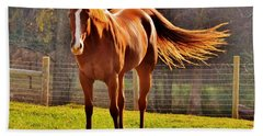 Horse's Tail Beach Towel