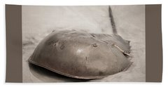 Horseshoe Crab Beach Sheet