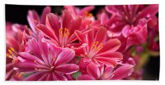Hot Glowing Pink Delight Of Flowers Beach Towel