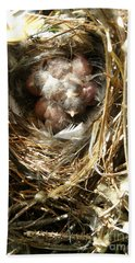 Beach Towel featuring the photograph House Wren Family by Angie Rea