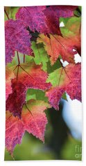 Beach Towel featuring the photograph How Beautifully The Leaves Grow Old  by Kerri Farley