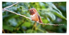 Humming Bird On Stick Beach Towel by Stephanie Hayes
