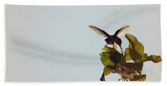 Beach Towel featuring the photograph Hummingbird And Lemon Blossoms by Cindy Garber Iverson