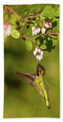 Hummingbird And Manzanita Blossom Beach Sheet