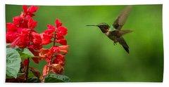 Hummingbird And Scarlet Sage Beach Towel