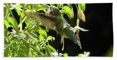 Hummingbird Feeding Beach Towel