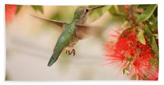 Hummingbird In Paradise Beach Towel by Penny Meyers