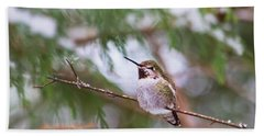 Hummingbird In Winter Beach Towel by Peggy Collins
