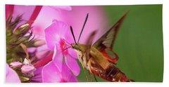 Hummingbird Moth Feeding 1 Beach Towel