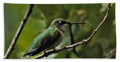 Hummingbird On Branch Beach Towel