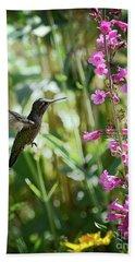 Hummingbird On Perry's Penstemon Beach Towel
