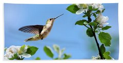 Hummingbird Springtime Beach Towel