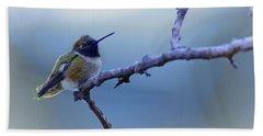 Hummingbird11 Beach Towel