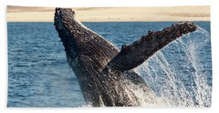 Humpback Whale Breaching Beach Towel