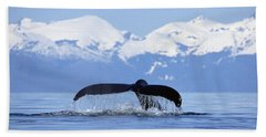 Beach Towel featuring the photograph Humpback Whale Megaptera Novaeangliae by Konrad Wothe
