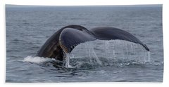 Beach Towel featuring the photograph Humpback Whale by Trace Kittrell