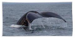 Humpback Whale Beach Sheet