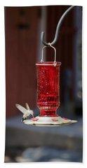 Hungry Hummingbird Beach Sheet