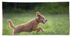 Hunting Dog Beach Towel by Teemu Tretjakov