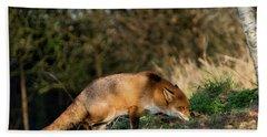 Hunting Fox  Beach Towel