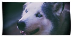 Beach Towel featuring the photograph Husky by Dennis Baswell