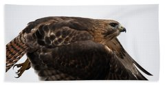Hybrid Hawk Flyby  Beach Towel