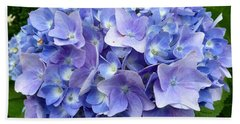 Hydrangea Heaven Beach Sheet by Beth Saffer