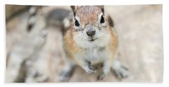 Hypno Squirrel Beach Towel