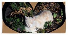 I Chose Love With A Cat Enjoying Catnip In A Garden Beach Towel