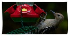 Beach Towel featuring the photograph I Want To Be A Hummingbird by Robert L Jackson
