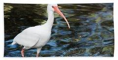 Ibis In The Swamp Beach Towel