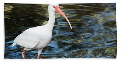 Ibis In The Swamp Beach Sheet by Kenneth Albin