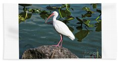 Ibis Rock Beach Towel