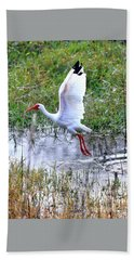 Ibis Taking Off From Pond Beach Towel by Carol Groenen