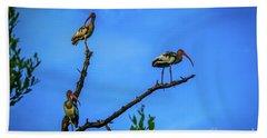 Ibis Trio Beach Sheet by Tom Claud