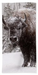 Ice Cold Winter Buffalo Beach Towel