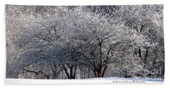 Beach Towel featuring the photograph Ice Orchard by Diane E Berry