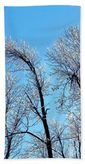 Iced Trees Beach Towel
