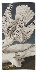 Iceland Falcon Or Jer Falcon Beach Towel by John James Audubon